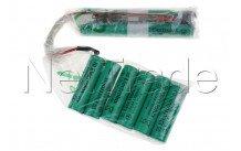 Electrolux - Batterie, kit, ergo rapido, ag9x - 4055132304